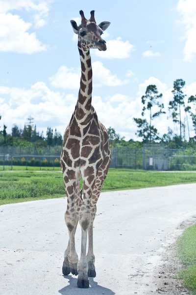 2012Vacation_Day06_27