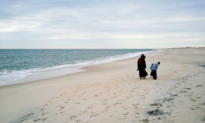 Assateague_Thxgiving_2010_01-2