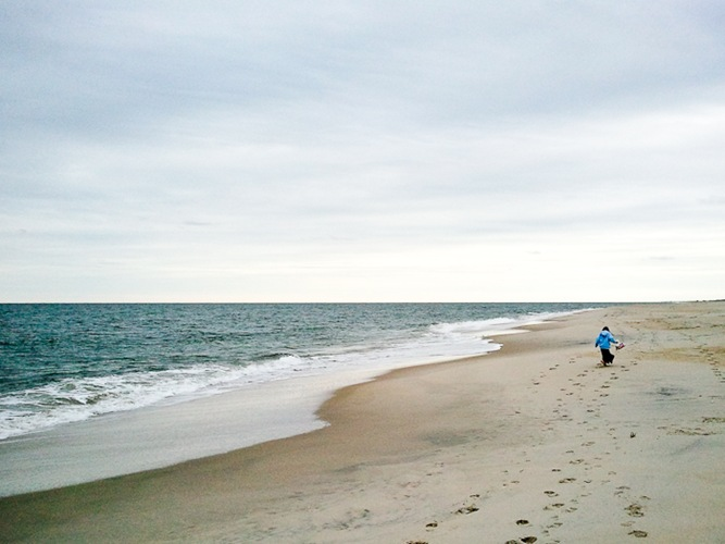 Assateague_Thxgiving_2010_02