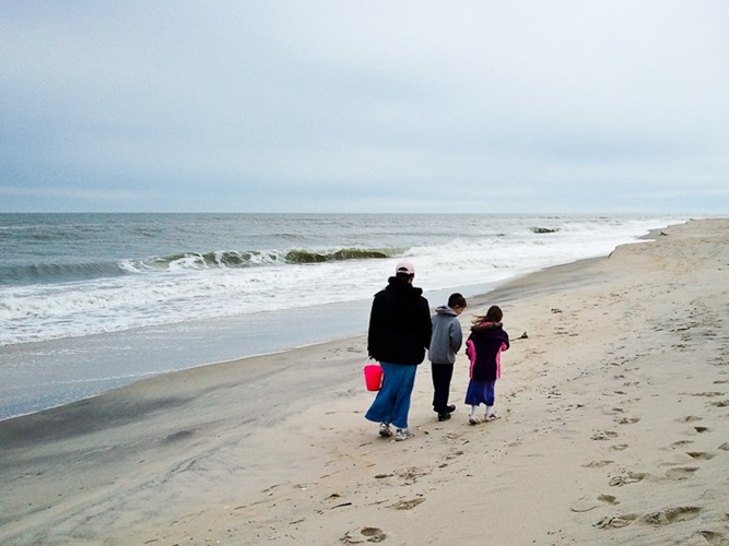 Assateague_Thxgiving_2010_06