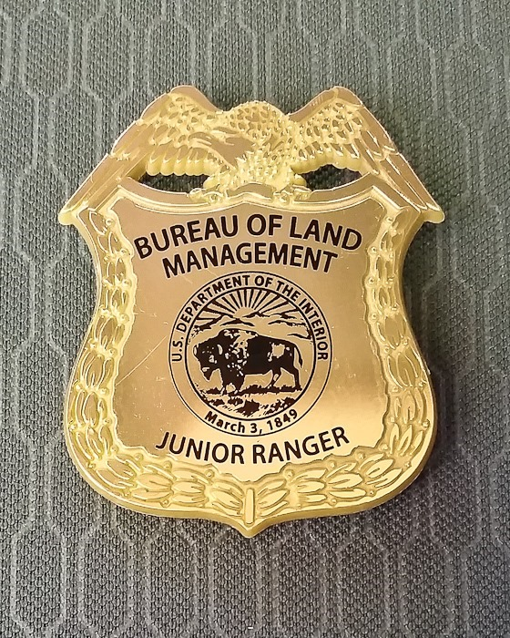 Autumn_and_JR_Badges_002